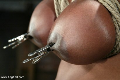 Photo number 5 from Jada Fire shot for Hogtied on Kink.com. Featuring Jada Fire in hardcore BDSM & Fetish porn.