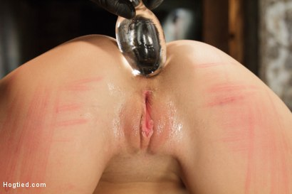 Photo number 6 from Double Penetration Anal Whore Gets The Squirting Shocker! shot for Hogtied on Kink.com. Featuring Roxy Raye in hardcore BDSM & Fetish porn.