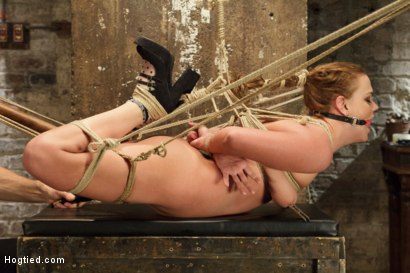 Photo number 2 from Double Penetration Anal Whore Gets The Squirting Shocker! shot for Hogtied on Kink.com. Featuring Roxy Raye in hardcore BDSM & Fetish porn.