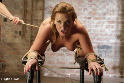 Photo number 5 from Double Penetration Anal Whore Gets The Squirting Shocker! shot for Hogtied on Kink.com. Featuring Roxy Raye in hardcore BDSM & Fetish porn.