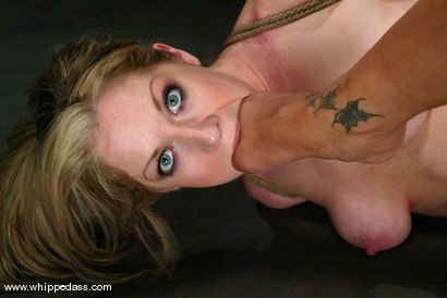 Photo number 8 from DragonLily and Haley Scott shot for Whipped Ass on Kink.com. Featuring DragonLily and Haley Scott in hardcore BDSM & Fetish porn.