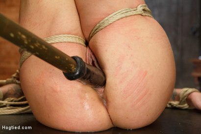 Photo number 11 from Request Fulfilled: Big Tit MILF Bondage Predicaments shot for Hogtied on Kink.com. Featuring Holly Heart in hardcore BDSM & Fetish porn.