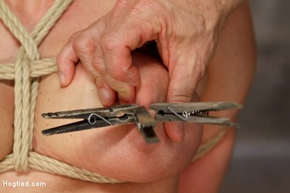 Photo number 7 from Request Fulfilled: Big Tit MILF Bondage Predicaments shot for Hogtied on Kink.com. Featuring Holly Heart in hardcore BDSM & Fetish porn.