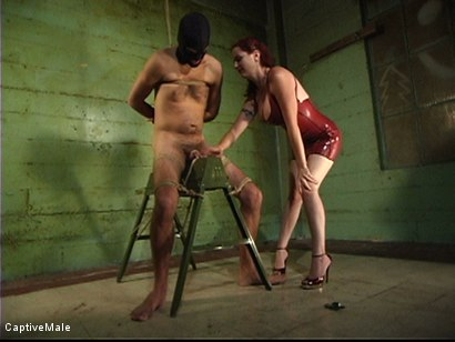 Photo number 2 from Dick On A Sawhorse shot for Captive Male on Kink.com. Featuring Mz Berlin and Lefty in hardcore BDSM & Fetish porn.