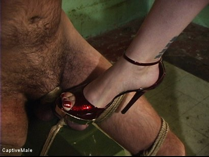 Photo number 3 from Dick On A Sawhorse shot for Captive Male on Kink.com. Featuring Mz Berlin and Lefty in hardcore BDSM & Fetish porn.