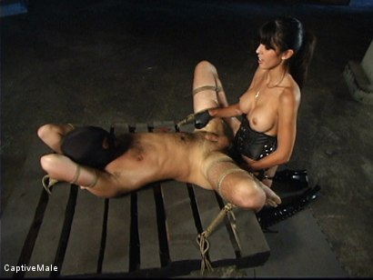 Photo number 13 from First he Must Earn Her Pussy shot for Captive Male on Kink.com. Featuring shy love and Lefty in hardcore BDSM & Fetish porn.