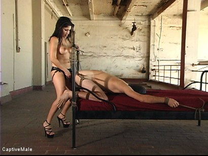 Photo number 13 from Body Teasing shot for Captive Male on Kink.com. Featuring Lefty and Sativa Rose in hardcore BDSM & Fetish porn.