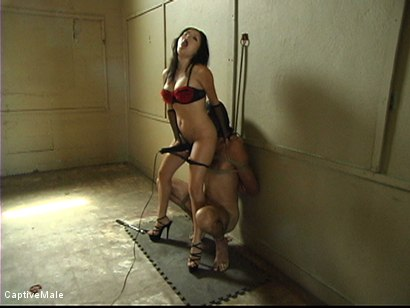 Photo number 9 from Body Teasing shot for Captive Male on Kink.com. Featuring Lefty and Sativa Rose in hardcore BDSM & Fetish porn.
