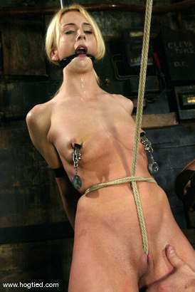 Photo number 2 from Kelly Wells shot for Hogtied on Kink.com. Featuring Kelly Wells in hardcore BDSM & Fetish porn.