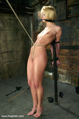 Photo number 3 from Kelly Wells shot for Hogtied on Kink.com. Featuring Kelly Wells in hardcore BDSM & Fetish porn.