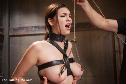 Photo number 12 from The Training of an Undisciplined Little Fuck Toy, Day Two shot for The Training Of O on Kink.com. Featuring Holly Michaels and Owen Gray in hardcore BDSM & Fetish porn.