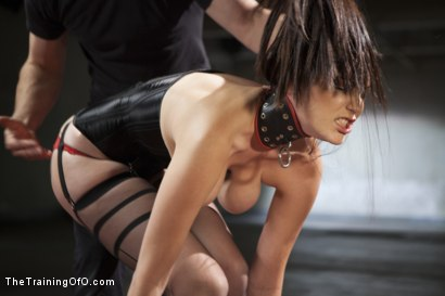 Photo number 6 from The Training of a Lazy Anal Slut, Final Day shot for The Training Of O on Kink.com. Featuring Holly Michaels and Owen Gray in hardcore BDSM & Fetish porn.
