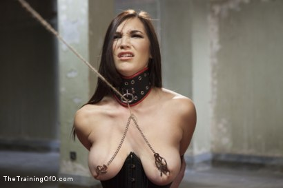 Photo number 4 from The Training of a Lazy Anal Slut, Final Day shot for The Training Of O on Kink.com. Featuring Holly Michaels and Owen Gray in hardcore BDSM & Fetish porn.