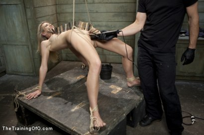 Photo number 2 from The Training of Amanda Tate, Day One shot for The Training Of O on Kink.com. Featuring Amanda Tate and Owen Gray in hardcore BDSM & Fetish porn.