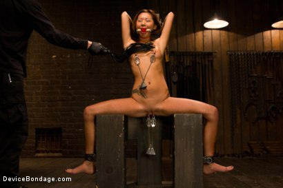 Photo number 3 from Petite Asian Bondage Virgin, Gets a Dose of Suffering shot for Device Bondage on Kink.com. Featuring Alina Li in hardcore BDSM & Fetish porn.