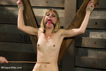Photo number 13 from Dominating A Dominatrix shot for Whipped Ass on Kink.com. Featuring Cherry Torn and Mona Wales in hardcore BDSM & Fetish porn.