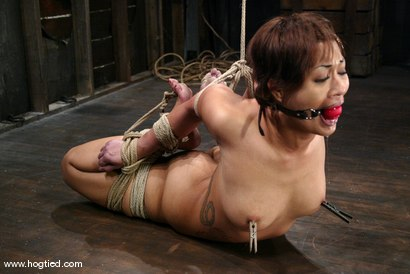 Photo number 12 from DragonLily shot for Hogtied on Kink.com. Featuring DragonLily in hardcore BDSM & Fetish porn.