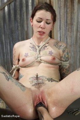 Free tranny tstv porno