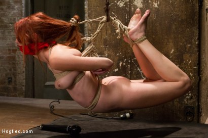 Photo number 9 from Redhead Newcomer Taken by Sergeant Major shot for Hogtied on Kink.com. Featuring Sgt. Major and Ashley Lane in hardcore BDSM & Fetish porn.