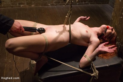 Photo number 12 from Redhead Newcomer Taken by Sergeant Major shot for Hogtied on Kink.com. Featuring Sgt. Major and Ashley Lane in hardcore BDSM & Fetish porn.