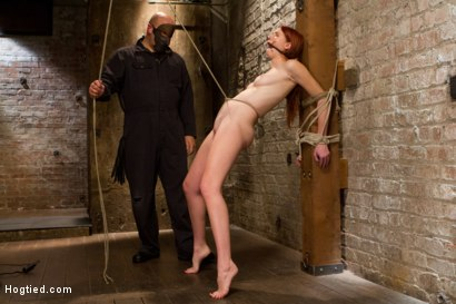 Photo number 4 from Redhead Newcomer Taken by Sergeant Major shot for Hogtied on Kink.com. Featuring Sgt. Major and Ashley Lane in hardcore BDSM & Fetish porn.