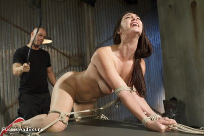 Photo number 7 from Fuck, is all you get, bitch!! shot for Fucked and Bound on Kink.com. Featuring Holly Michaels and Derrick Pierce in hardcore BDSM & Fetish porn.