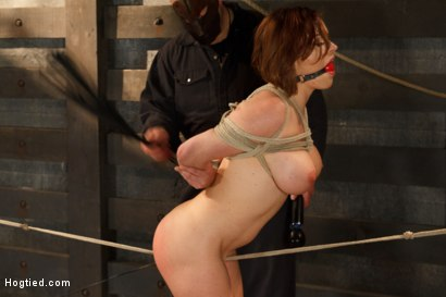 Photo number 14 from Big Titted Torment shot for Hogtied on Kink.com. Featuring Sgt. Major and Krissy Lynn in hardcore BDSM & Fetish porn.