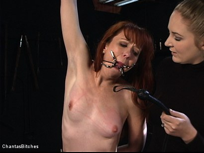 Photo number 1 from Severe Pain shot for Chantas Bitches on Kink.com. Featuring Trinity Post in hardcore BDSM & Fetish porn.