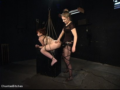 Photo number 10 from Severe Pain shot for Chantas Bitches on Kink.com. Featuring Trinity Post in hardcore BDSM & Fetish porn.