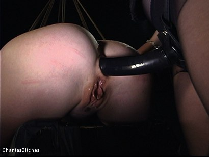 Photo number 11 from Severe Pain shot for Chantas Bitches on Kink.com. Featuring Trinity Post in hardcore BDSM & Fetish porn.