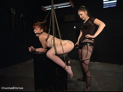 Photo number 13 from Severe Pain shot for Chantas Bitches on Kink.com. Featuring Trinity Post in hardcore BDSM & Fetish porn.