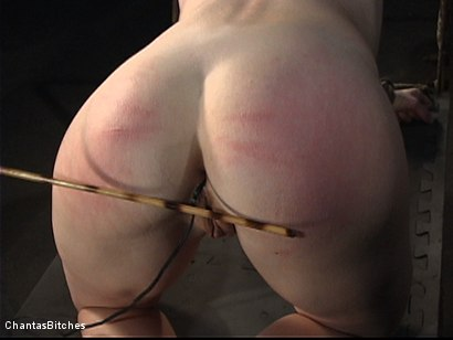 Photo number 7 from Severe Pain shot for Chantas Bitches on Kink.com. Featuring Trinity Post in hardcore BDSM & Fetish porn.