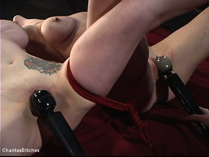 Photo number 12 from They Will Both Submit shot for Chantas Bitches on Kink.com. Featuring Mz Berlin and Sabrina Fox in hardcore BDSM & Fetish porn.