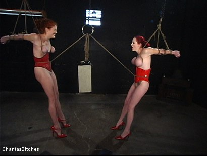 Photo number 15 from They Will Both Submit shot for Chantas Bitches on Kink.com. Featuring Mz Berlin and Sabrina Fox in hardcore BDSM & Fetish porn.