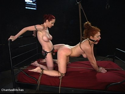 Photo number 5 from They Will Both Submit shot for Chantas Bitches on Kink.com. Featuring Mz Berlin and Sabrina Fox in hardcore BDSM & Fetish porn.