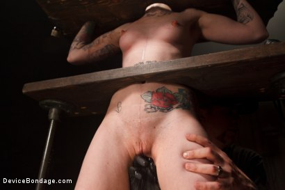 Photo number 8 from <strong>Blind Fear </strong><br>A Device Bondage Feature<br> shot for Device Bondage on Kink.com. Featuring Sheena Rose in hardcore BDSM & Fetish porn.