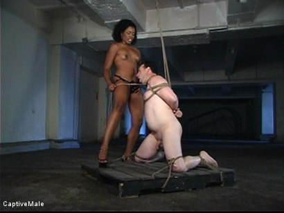 Photo number 14 from Pathetic Mini shot for Captive Male on Kink.com. Featuring Sydnee Capri and mini in hardcore BDSM & Fetish porn.