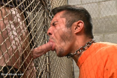 Photo number 3 from New muscled inmate at the mercy of Officer Connor Maguire shot for Bound Gods on Kink.com. Featuring Connor Maguire and Seth Santoro in hardcore BDSM & Fetish porn.