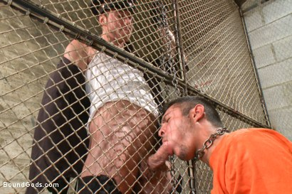 Photo number 4 from New muscled inmate at the mercy of Officer Connor Maguire shot for Bound Gods on Kink.com. Featuring Connor Maguire and Seth Santoro in hardcore BDSM & Fetish porn.