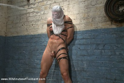 Photo number 14 from Alex Adams endures the cock, balls and ass torment shot for 30 Minutes of Torment on Kink.com. Featuring Alex Adams in hardcore BDSM & Fetish porn.