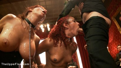 Photo number 4 from Anal Punishment for Submissive Service Sluts shot for The Upper Floor on Kink.com. Featuring Syren de Mer, Tommy Pistol and Daisy Ducati in hardcore BDSM & Fetish porn.
