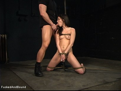 Photo number 14 from Obedience Training shot for  on Kink.com. Featuring TJ Cummings and Dakoda Brookes in hardcore BDSM & Fetish porn.