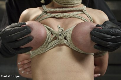 Photo number 1 from Devastating Darling  shot for Sadistic Rope on Kink.com. Featuring Dee Williams in hardcore BDSM & Fetish porn.