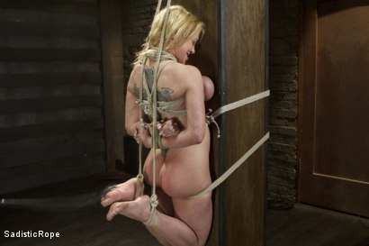 Photo number 16 from Devastating Darling  shot for Sadistic Rope on Kink.com. Featuring Dee Williams in hardcore BDSM & Fetish porn.