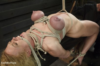 Photo number 17 from Devastating Darling  shot for Sadistic Rope on Kink.com. Featuring Dee Williams in hardcore BDSM & Fetish porn.