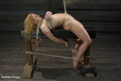 Photo number 10 from Devastating Darling  shot for Sadistic Rope on Kink.com. Featuring Dee Williams in hardcore BDSM & Fetish porn.