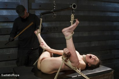 Photo number 6 from Casey Calvert Suffers Through Relentless Torture and Hardcore Bondage shot for Sadistic Rope on Kink.com. Featuring Casey Calvert in hardcore BDSM & Fetish porn.