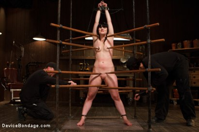 Photo number 5 from Pain Slut is Ruined by Extreme Torment shot for Device Bondage on Kink.com. Featuring Katharine Cane in hardcore BDSM & Fetish porn.