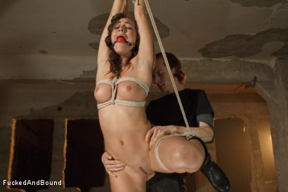 Photo number 2 from Learning to be a Good Submissive shot for Fucked and Bound on Kink.com. Featuring Rilynn Rae and Owen Gray in hardcore BDSM & Fetish porn.