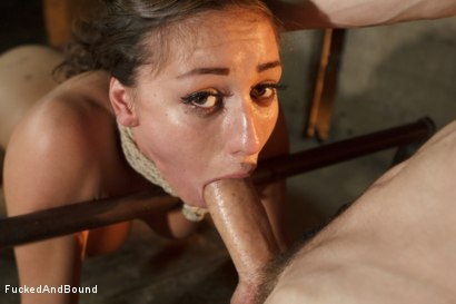 Photo number 7 from Learning to be a Good Submissive shot for Brutal Sessions on Kink.com. Featuring Rilynn Rae and Owen Gray in hardcore BDSM & Fetish porn.